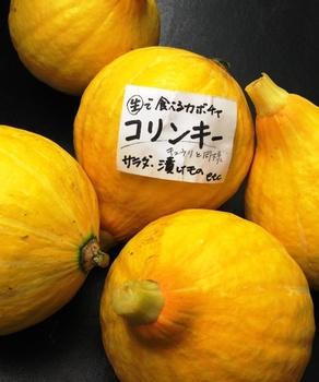 コリンキー かぼちゃ.JPG