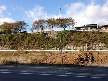 津波の丘.JPG