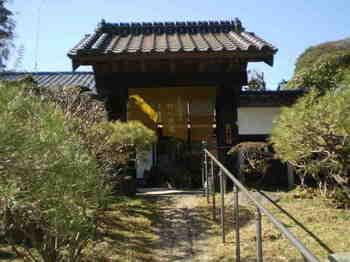 野の花庵 門.jpg