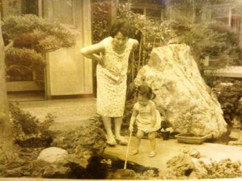 錦鯉の庭.jpg